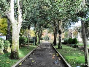 JARDINES VALLE-INCLÁN, POBRA DO CARAMIÑAL 08-12-2015