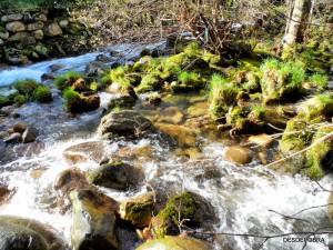 Río Pedras, otro punto de vista. Pobra do Caramiñal